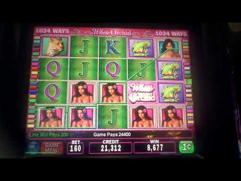 White Orchid Slot Machine BIG WIN Line Hit