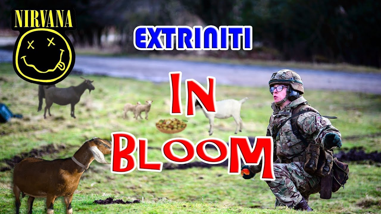 "Extriniti ""In Bloom"" Acoustic Guitar Rock Cover (Nirvana)"