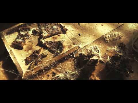 Lance Butters - Es zieht / Ich zieh Video