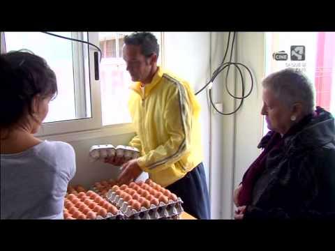 Huevos Camperos Tejero