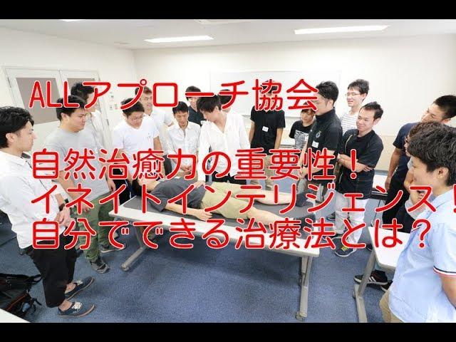 イネイトインテリジェンス 自然治癒力改善 【越谷 腰痛 整体】