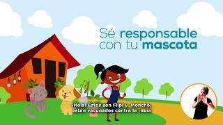 Cauca Saludable Dimensión 1 PDSP Salud ambiental