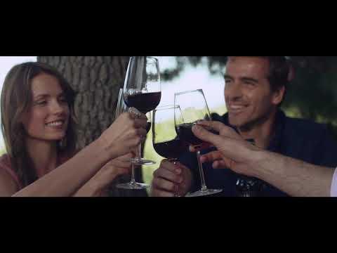 Gran Castillo Family Selection Wine TV spot