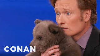 Video Animal Expert David Mizejewski: Brown Bear Cub & Baby Alligator - CONAN on TBS MP3, 3GP, MP4, WEBM, AVI, FLV Oktober 2017