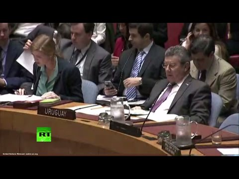 Экстренное заседание Совбеза ООН по Сирии (видео)