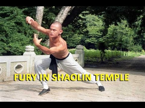 Wu Tang Collection - Fury In Shaolin Temple