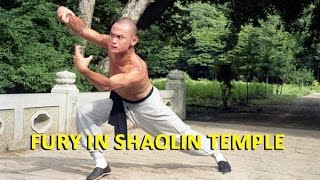 Nonton Wu Tang Collection   Fury In Shaolin Temple Film Subtitle Indonesia Streaming Movie Download
