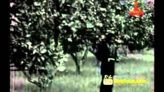 Bahta G/Hiwot Documentary   Part 4