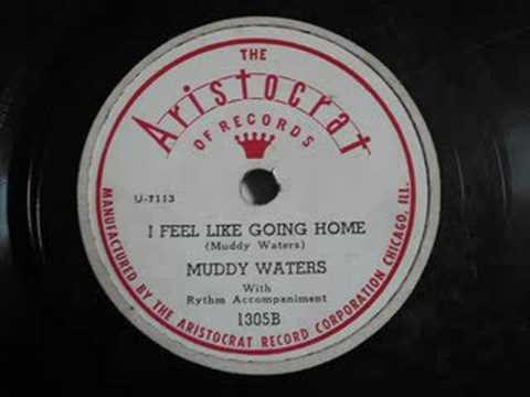 Tekst piosenki Muddy Waters - I feel like going home po polsku