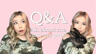 Q&A! | DREAM PETS | FUTURE PETS | SCARY HORSES? by Emma Lynne Sampson