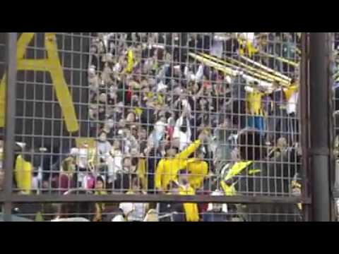 Hinchada de Almirante Brown - La Banda Monstruo - Almirante Brown