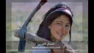 الجمال العربي  2015 - الجمال العراقي - الجمال السعودي