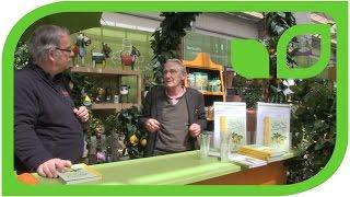 Gartenautor A. Honegger im Gespräch Teil 7: Überwinterung von Zitruspflanzen  (Schwizerdütsch)