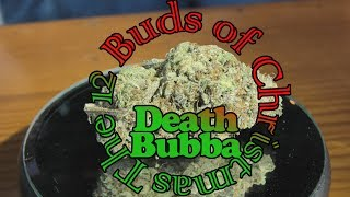 Death Bubba 12 Buds of Christmas by Urban Grower