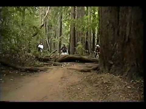 Santa Cruz Mountain Biking