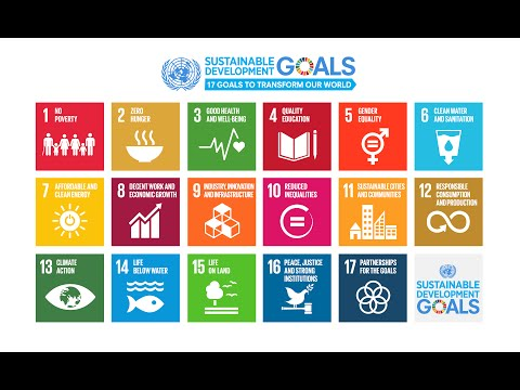 From MDGs to SDGs - The New Agenda for Sustainable Development