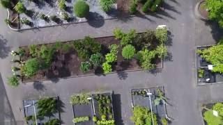 Imagefilm Gartencenter Rosen Schleicher