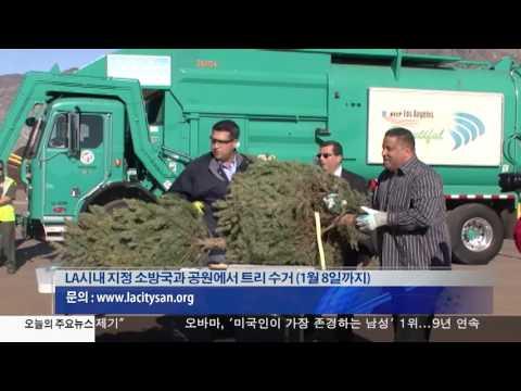 성탄 트리 무료 수거 12.28.16 KBS America News