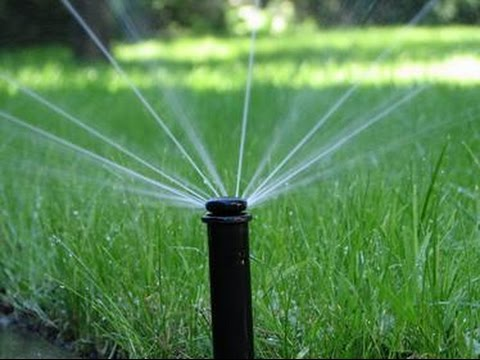 Pop up sprinkler system for the lawn showing the sprinklers being turned on.