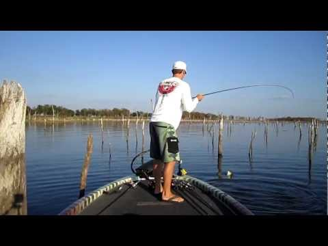 Largemouth Bass 6 and 9lbers on Topwater at Lake Fork