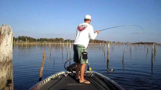Video Largemouth Bass 6 and 9lbers on Topwater at Lake Fork MP3, 3GP, MP4, WEBM, AVI, FLV Mei 2019