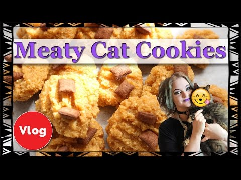 Meaty Cookies For Your Cat! Learn How To Make Tasty Treat For Your Cat! Easy and Fun Recipe