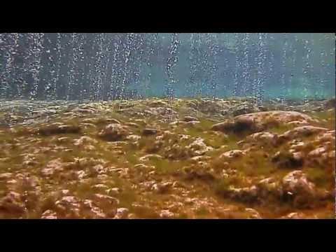 Cave Dive | Ginnie Springs | Flórida - EUA