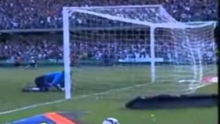 Fluminense x Coritiba (Rebaixamento 2009) - Narração Engraçada