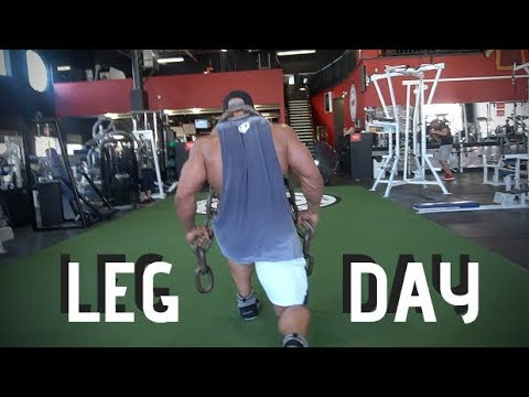Video HD MASSTHETICS PROTOCOL EP5 : WEST SIDE LEG DAY! download in MP3, 3GP, MP4, WEBM, AVI, FLV January 2017