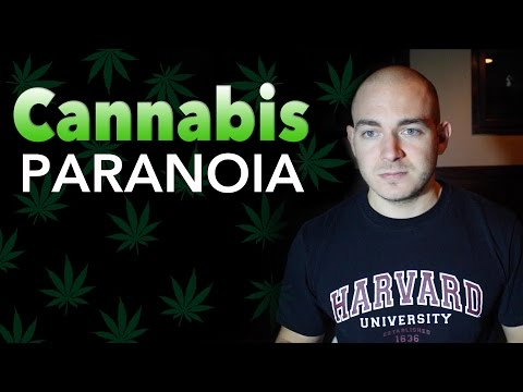 Cannabis Paranoia, and How to Cope