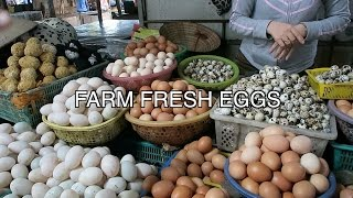 Video VIETNAM Open Air Farmer's Market MP3, 3GP, MP4, WEBM, AVI, FLV April 2018