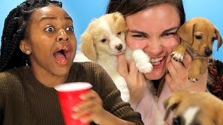 We gave drunk girls puppies and there were tears. Special Thanks to Fur Baby Rescue www.furbabyrescue.org ...