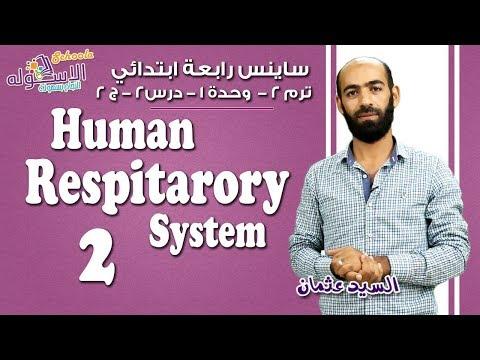 ساينس رابعة ابتدائي 2019 | Human Respiratory System | تيرم2- وح1 - در2-جزء2| الاسكوله
