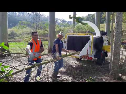 Picador / Triturador de troncos e galhos Lippel - PTU 300 triturando galhadas e troncos