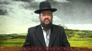 פרשת לך לך – אברהם אבינו – אברהם העברי המאמין הראשון – אבי האומה