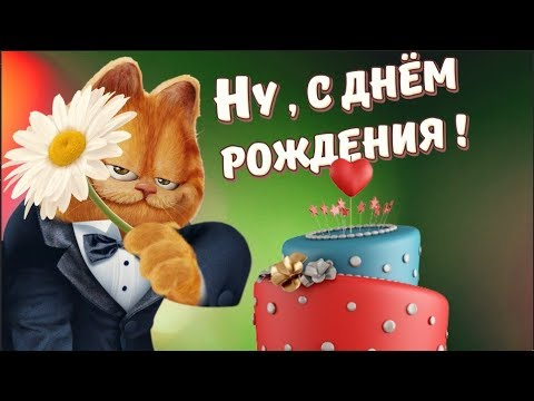 Поздравление с днём рождения от кота матроскина 53