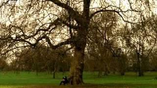Oasis - Songbird (Official Video)