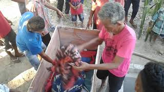 Download Video Proses pemakaman orang marapu sumba timur (Mauliru) MP3 3GP MP4