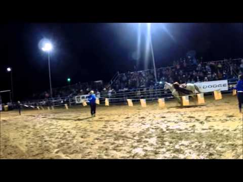 Southern Express Trick Riding Promo 2015