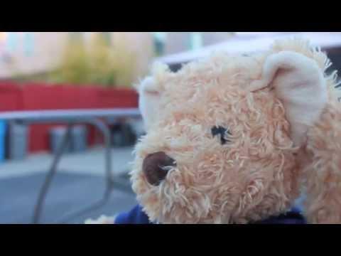 Happy Teddy Day - Telly Film