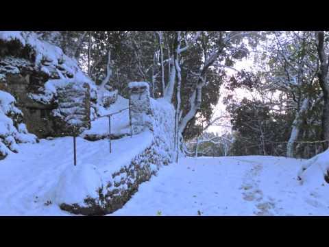 Assisi Neve Eremo delle Carceri