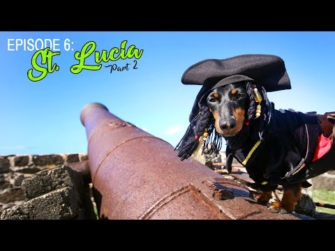 Episode 6: Crusoe's Trip to St Lucia (Part 2)