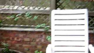 Video Basa piv (UK footage)