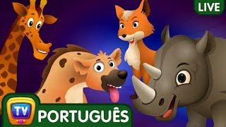 Video Ovos Surpresa | Canções em Português para Crianças | ChuChuTV Brazil Live Stream MP3, 3GP, MP4, WEBM, AVI, FLV April 2019