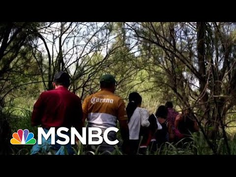 Must Watch: Chris Hayes On 'Despicable' New Donald President Trump Policy | All In | MSNBC