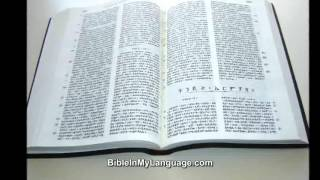Amharic Bible Burgundy - The Bible In Amharic From Ethiopia