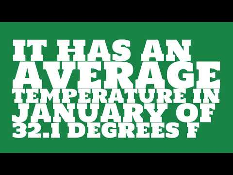 What is the average annual precipitation of New York?