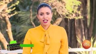 Ethio Business የኮንስትራክሽን መቀዛቀዝ እና የአዉዳመት ገበያ Season 2 Ep 8