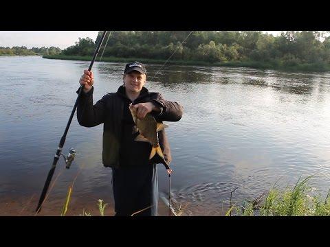 ловля леща в май на реке