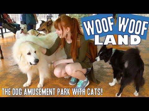 Japan's dog amusement park  WanWan Land!!
